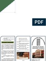 triptico BALANCES FRAGUADOS 1.docx