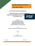 PROYECTO_INFLUENCIA-DE-CAMPO-MAGNÉTICO-PARA-EL-CRECIMIENTO-DE-LAS-PLANTAS_2019.docx