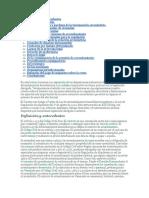 Definición y antecedentes.docx