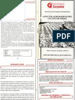 Aspectos Agronomicos Del Frijol