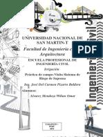 VISITA.DE.CAMPO-convertido.pdf