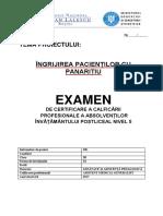 PANARITIU I.docx