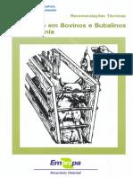 Vacinação Em Bovinos e Bubalinos Na Amazônia