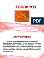 Лептоспироз.pptx