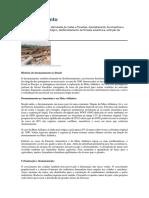 Desmatamento.pdf