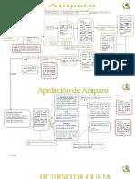 Esquemas Del Amparo 23