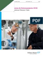 Cursos de Entrenamiento Endress+Hauser Chile 2018.pdf