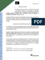 Citas y Bibliografia.docx