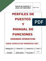 Manual de Funciones y Perfil Puesto Unidades Operativas v04 (Junio 2013)