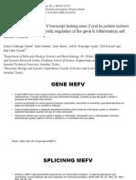 Artigo INCA 14-11-18.pdf