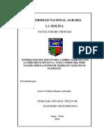 TESIS OKOKOKOK yakelyn_ramos.pdf