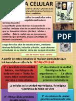 citología 1 BGU.pptx