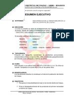 2.- RESUMEN EJECUTIVO.docx