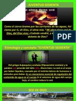 SEDIENTA.pptx