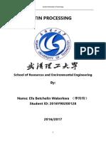 TIN_PROCESSING.docx