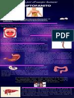 infografia un viaje por el cuerpo Humano
