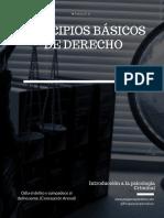 Principios básicos de Derecho.pdf