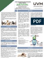 Cartel biogas.pptx
