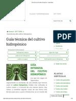 Guía técnica del cultivo hidropónico.pdf