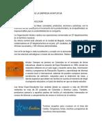ANALISIS INTERNO DE LA EMPRESA AVIATUR - SERGIO.docx