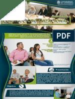 3 plegable maestria en control organizacional 1.1 (3) (1).pdf