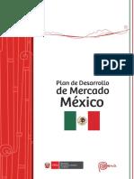 PDM Mexico.pdf