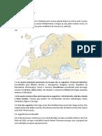 Correção dos testes - Geografia 7 ano.docx