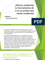 0_exposicion auditoria ambiental.pptx