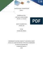 ORGANIZACION Y PRESENTACION.docx