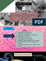 PPT Kelompok 4 Fasciola Hepatica