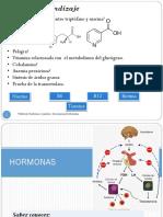 3. Hormonas I y II.pdf