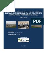 12. Informe EPEyR CT Puerto Bravo.pdf