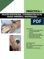 Práctica 1. Administración Endovenosa