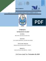 UNIDAD 6 MECANICA DE SUELOS.pdf