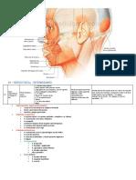 mimica_facial.pdf