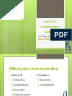 aula 2- Alterações cromossômicas numéricas e estruturais - del e dup
