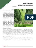 85. Importancia Del Azufre en Las Plantas-2