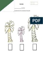 Guia seriación por tamaño palmeras.docx