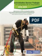 Informe Congreso 2018-2019.pdf