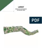INFORME_LAMAY.pdf