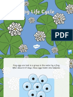 frog life cycle powerpoint