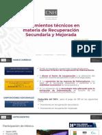 09-Lineamientos_Tecnicos_Materia_Recuperacion_Secundaria_Mejorada.pdf