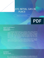 Initial Gas in Place