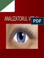 analizatorulvizual1.pdf