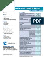 gas100.pdf