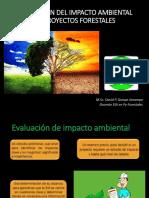 1- CLASE. Definiciones   y   conceptos   ambientales.ppt