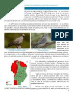 Nota Ecología. Caza de palomas.docx