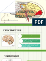 la-formacin-reticular.pptx