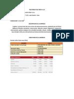 TELEFONICA DEL PERU S.docx