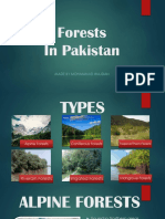 Forests PPT by @mwajdan5 (insta)